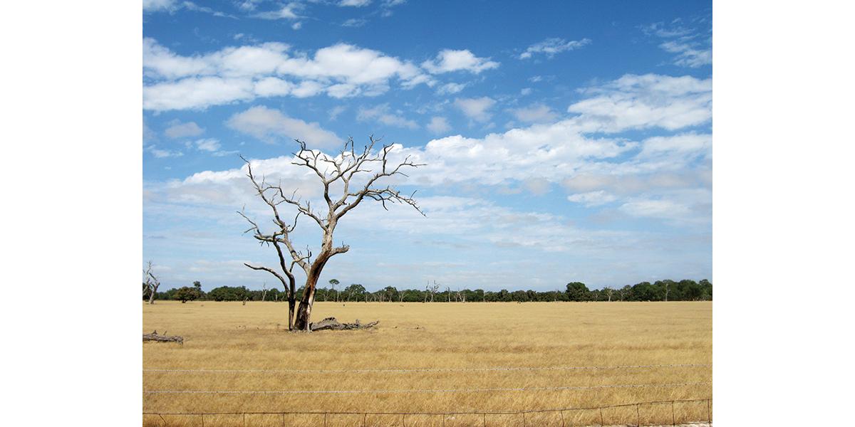 Perth Around – Swan Valley & Whiteman Park